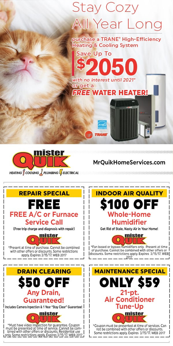 Current Equipment Offer for Mister Quik